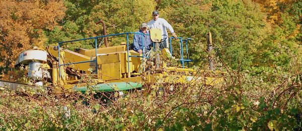 Harvesting Cab F