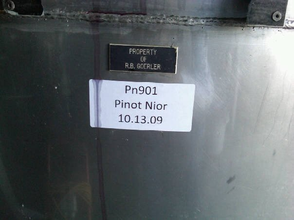 Jamesport-vineyards-harvest-pinot-noir