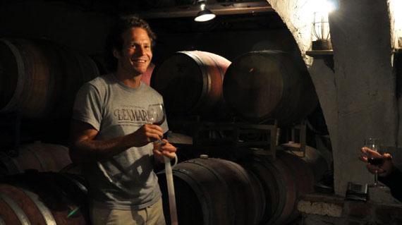 Matt cellar
