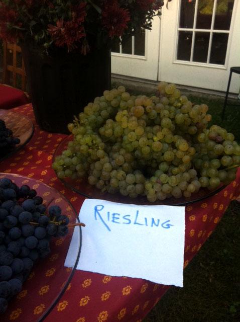 Ravines-riesling
