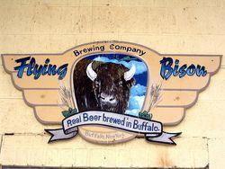 Flying-bison