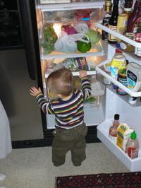 Jackson_fridge